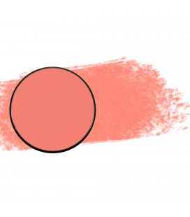Aqua paint recambio - Rose